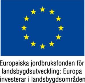 eu_fond